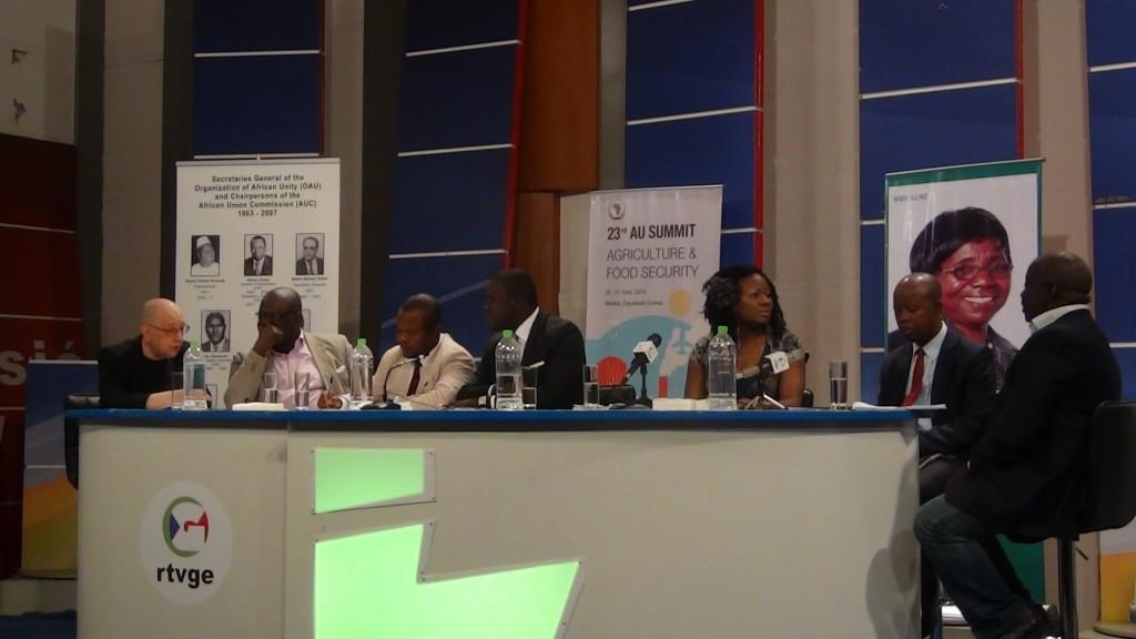 EODE-TV - LM sur RTVGE 1 - l'afrique ds la géopol. mondiale (2014 06 24) FR 3